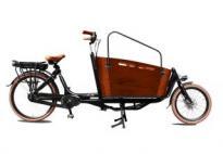 Biporteur électrique CARRY II 26